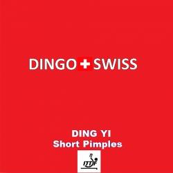 Dingo Swiss Ding Yi