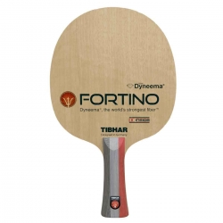 Tibhar Fortino Pro DC Inside